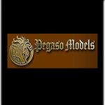 pegaso-model